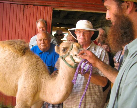 Dutch Creek Farm Animal Park