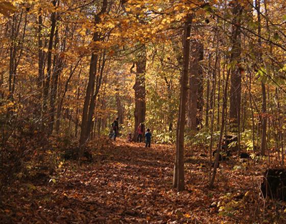 Ox Bow County Park