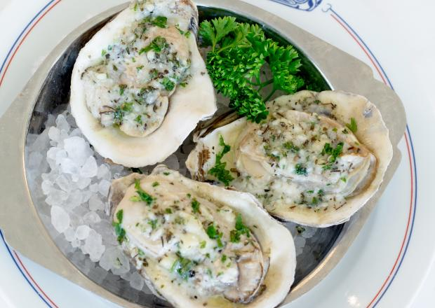 Coolinary Oysters