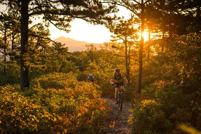 Dody Ridge Roanoke - Mountain Biking