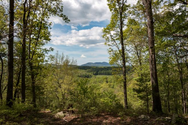 Mountain view through trees at Fairy Stone State Park in Stuart, Virginia
