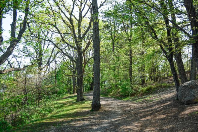 Mill Mountain Trail - Roanoke