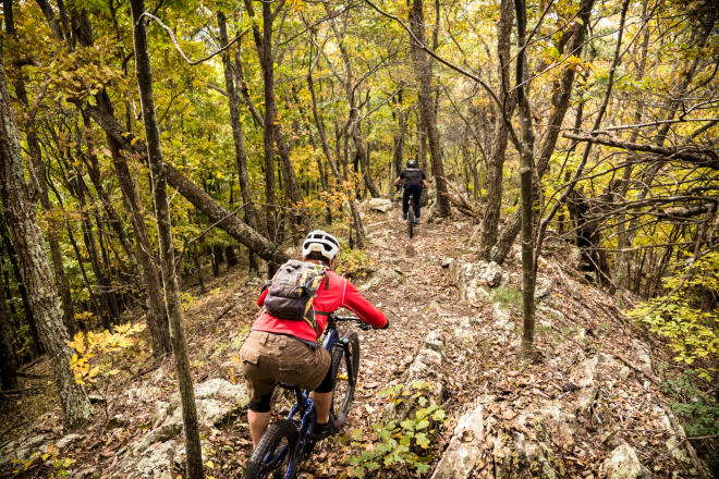 North Mountain Trail - Dragon's Back - Mountain Biking, Roanoke