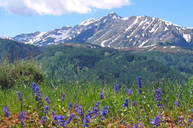 Challenging Hikes - Mount Nebo Peak