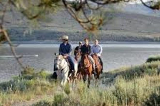 Horseback Rides 2