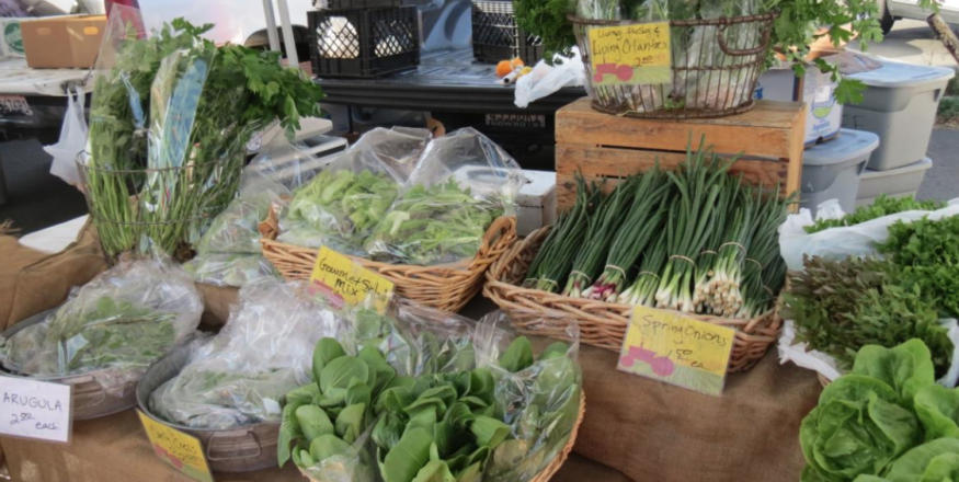 Morro Bay Farmer's Market