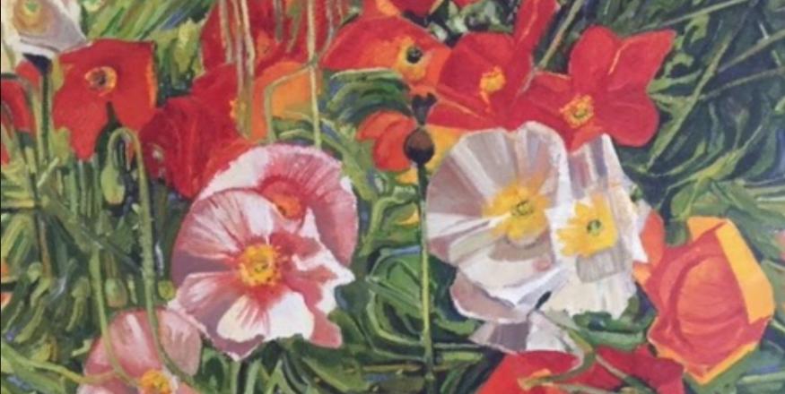 Mayo Botanico Art Exhibit