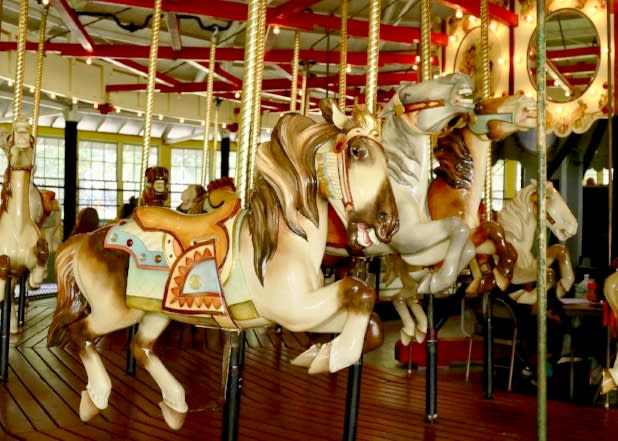 Recreation Park Carousel