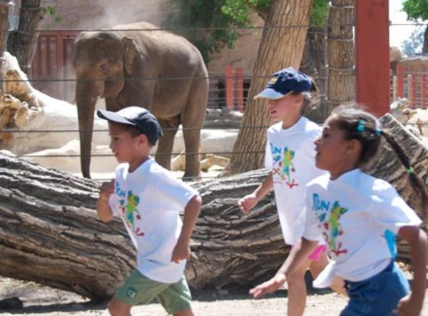 Kids running at the zoo