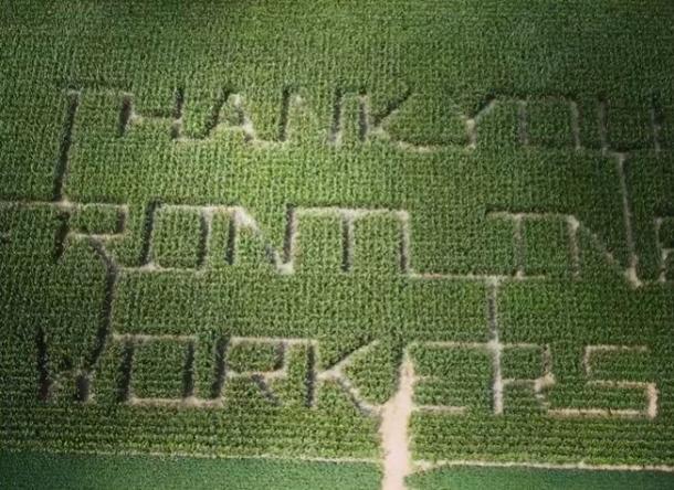 Aerial of corn maze