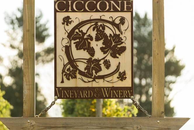 Ciccone Vineyard Summer Sign
