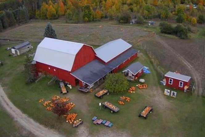 Clark's Family Farm