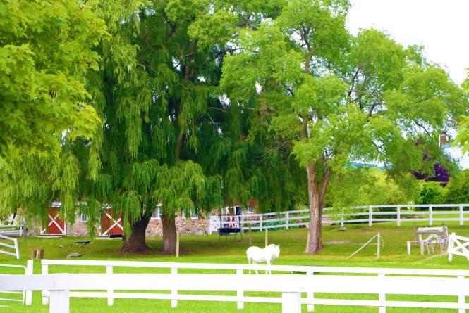 Crooked Creek Ranch