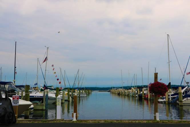 Elmwood Township Marina