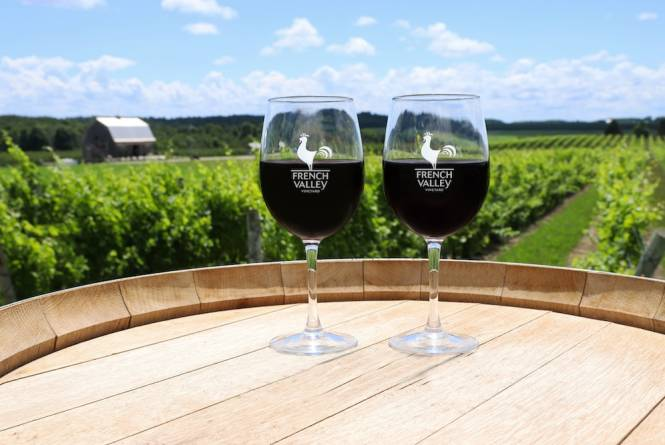 French Valley Vineyard