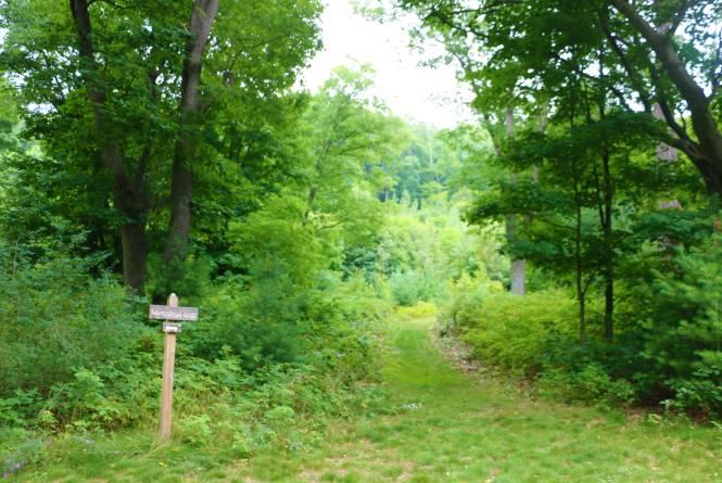 krumwiede Forest Preserve