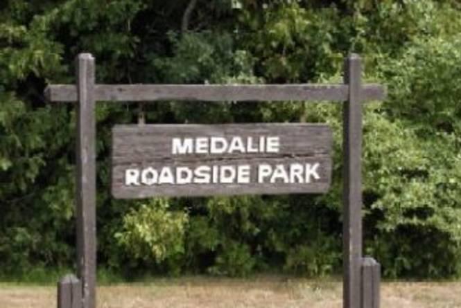 Medalie Park