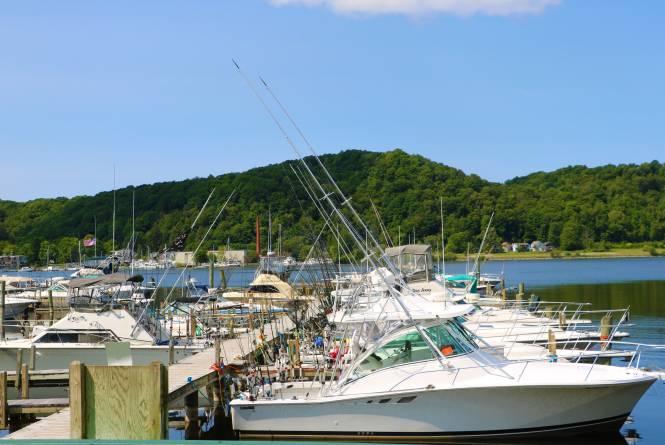 Sea Joy Charter Fishing