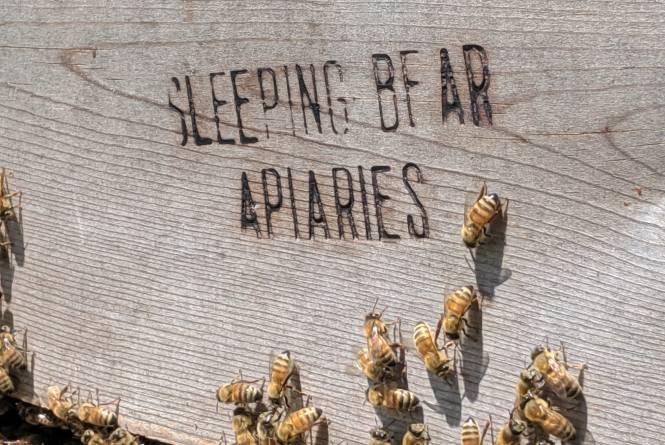 Sleeping Bear Farm