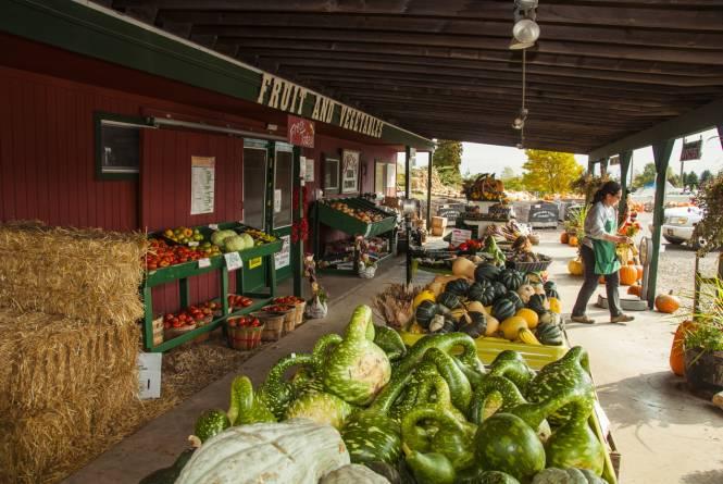 Gallaghers Farm Market