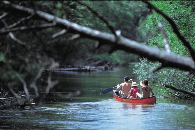 Tipsy Canoe