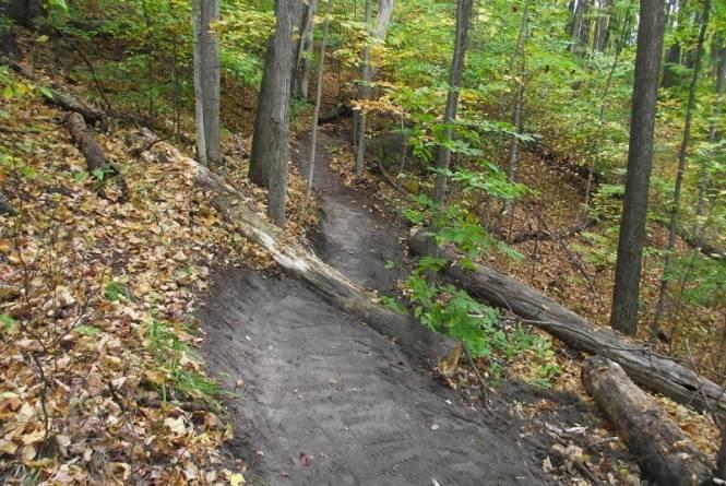 Cedar Creek Natural Area