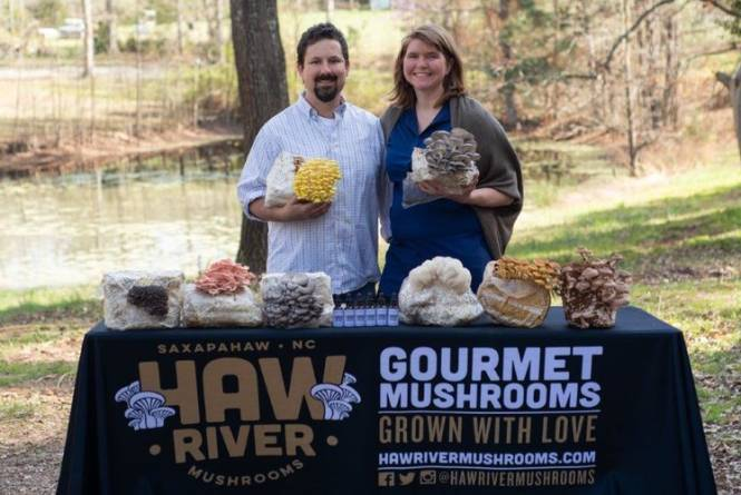 Haw River Mushroom