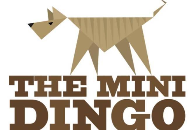 Minidingo