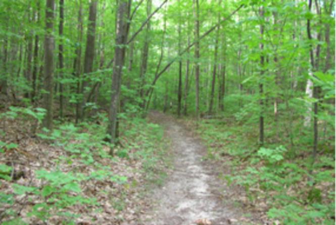Shaugar Hill Trail