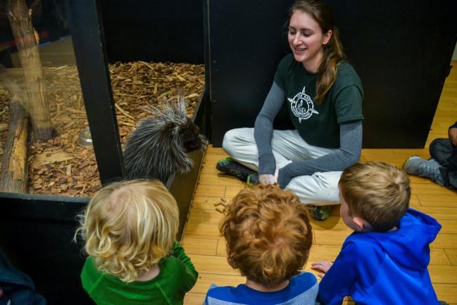 Group of kids looking at a Porcupine