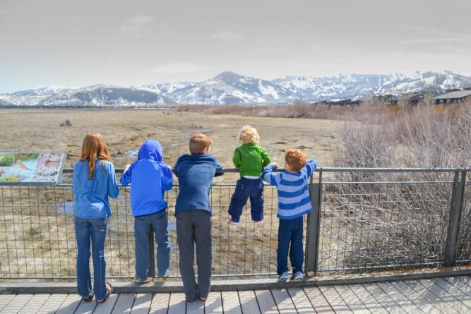 kids looking out at Swaner preserve wetlands