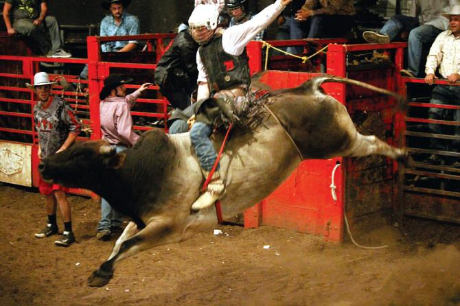 A cowboy rides a bull at Club Rodeo in Wichita