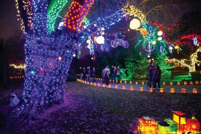 Walking the Paths at Illuminations