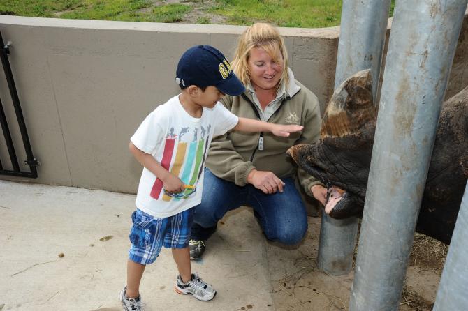 A young boy pets a rhino at Tanganyika Wildlife Park in Wichita
