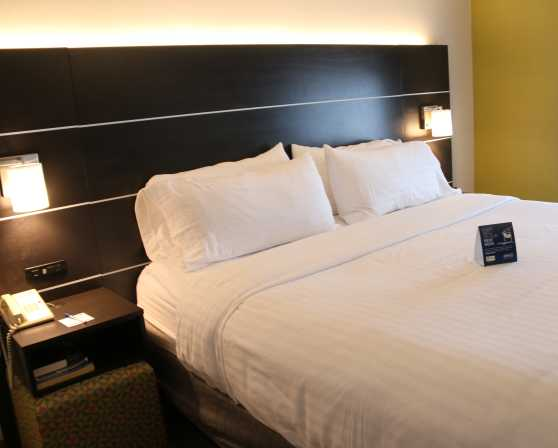 Holiday Inn Express & Suites - Wolf Road - Guest Room