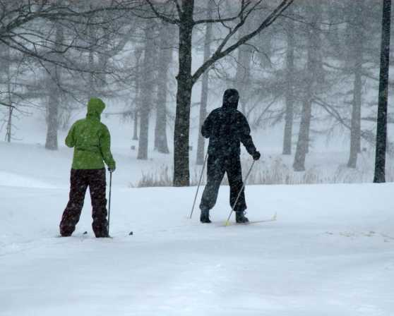 Washington Park - Cross Country Skiing