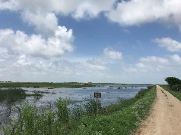 Brazoria Pond