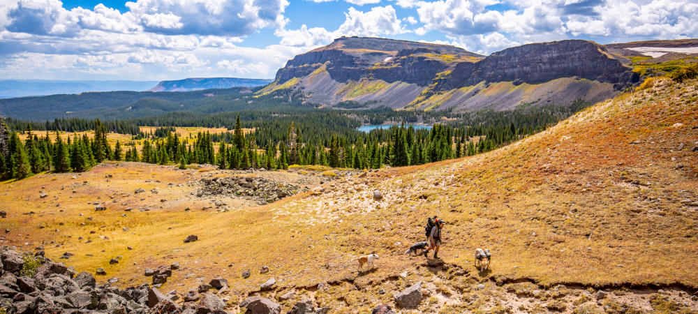 Top Ten Summer Activities in Steamboat Springs: Backpacking