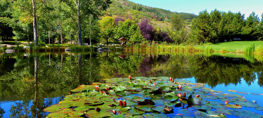 Top Ten Summer Activities in Steamboat Springs: Yampa River Botanic Park