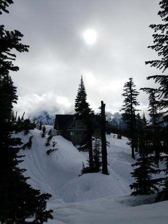 Mount Rainier Snowshoe
