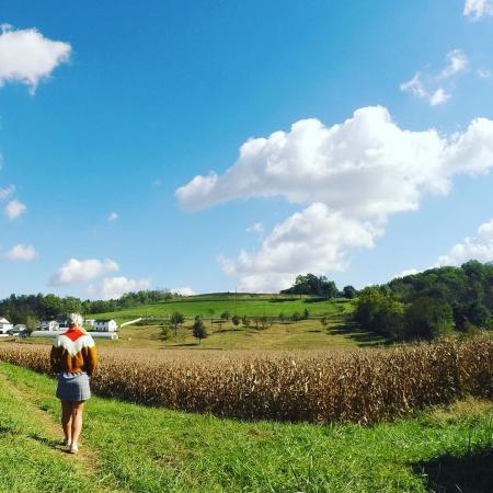 landscape photo of neltners farm in northern kentucky featuring white puffy clouds on a blue sky and a person overlooking a field of corn