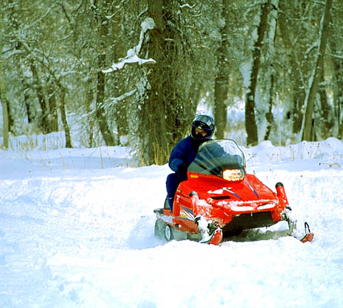 Christmas Activities In Utah.6 Festive Christmas Activities Explore Utah Valley