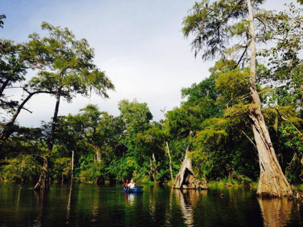 Paddling Big Thicket