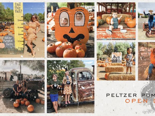 Peltzer Pumpkin Farm