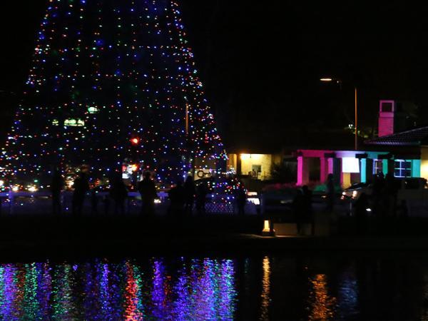 Christmas Tree Lighting at the Pond