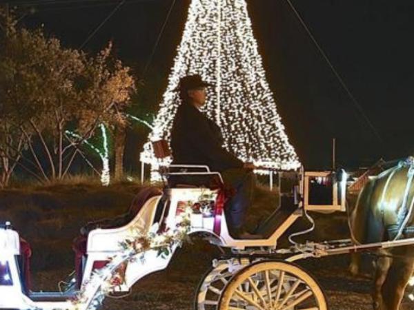Jingle Bell Sleigh Rides