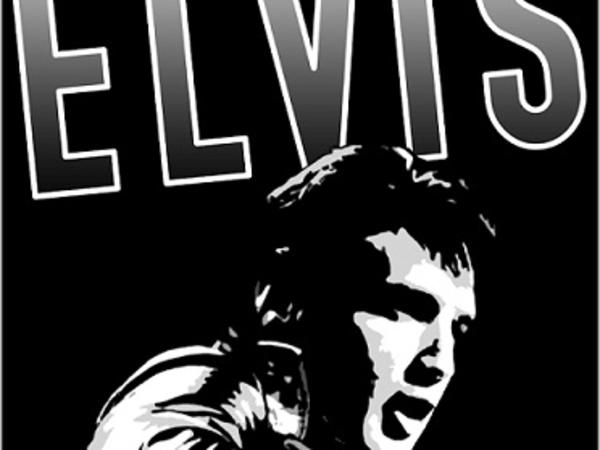 Direct from Las Vegas! The Wonder of Elvis