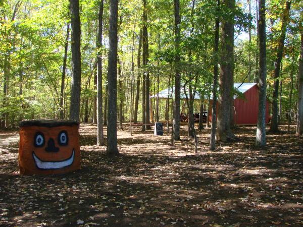 Picnic area at McKee's Cedar Creek Farm