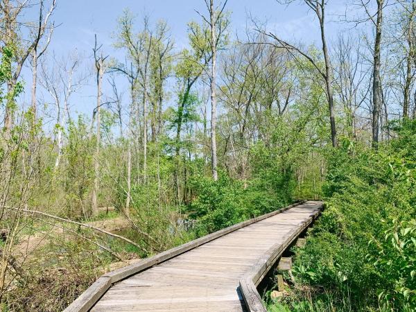 Kiwanis Riverway Park - Spring