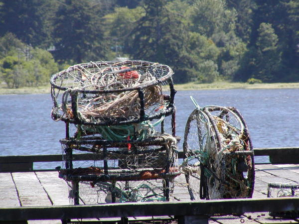 Crab Pots in Florence by Jennifer Archer
